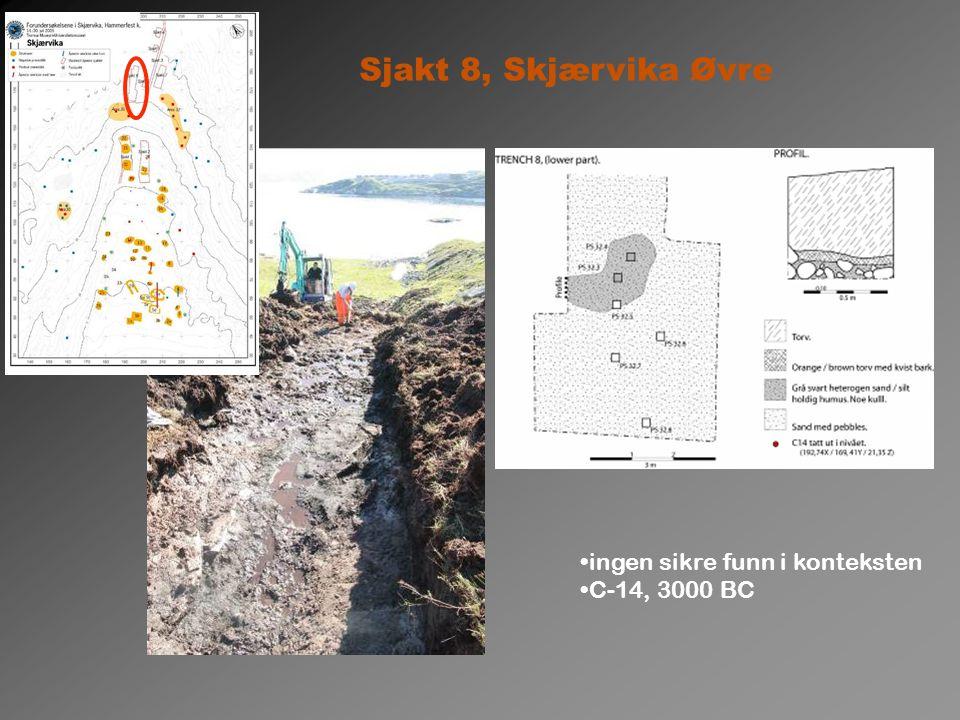 Sjakt 8, Skjærvika Øvre ingen sikre funn i konteksten C-14, 3000 BC
