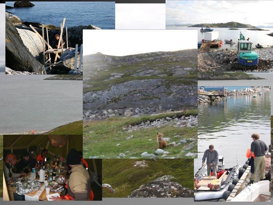 Arkeologiske forundersøkelser Skjærvika 2005