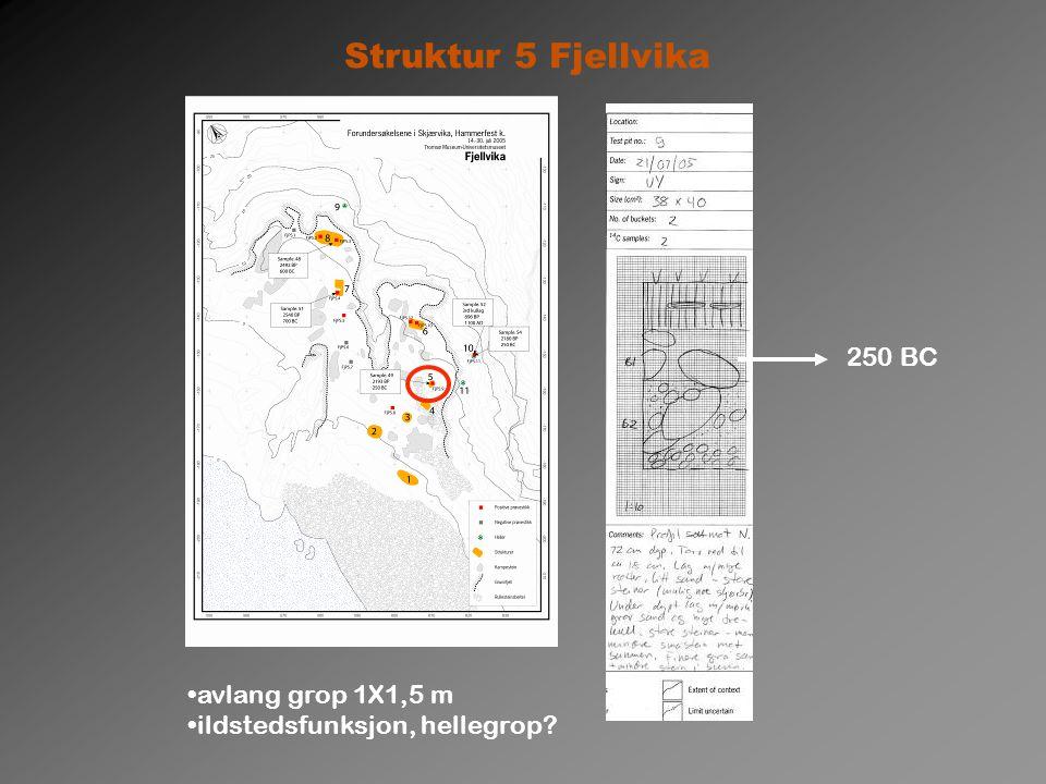 Struktur 5 Fjellvika 250 BC avlang grop 1X1,5 m