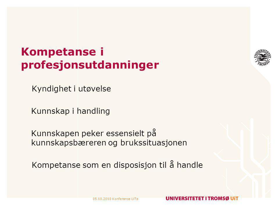 Kompetanse i profesjonsutdanninger