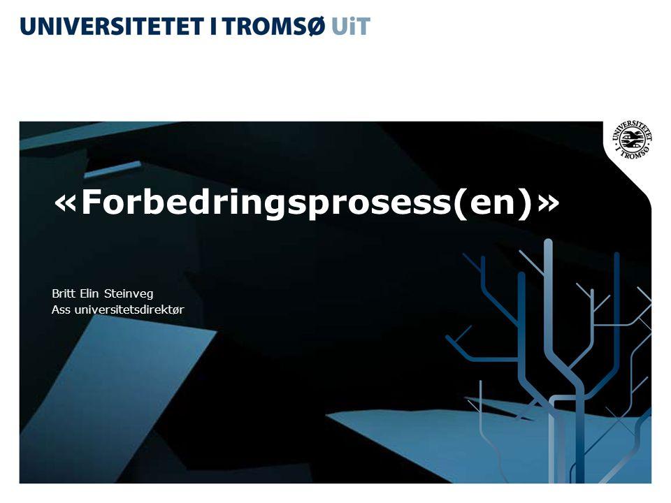 «Forbedringsprosess(en)»