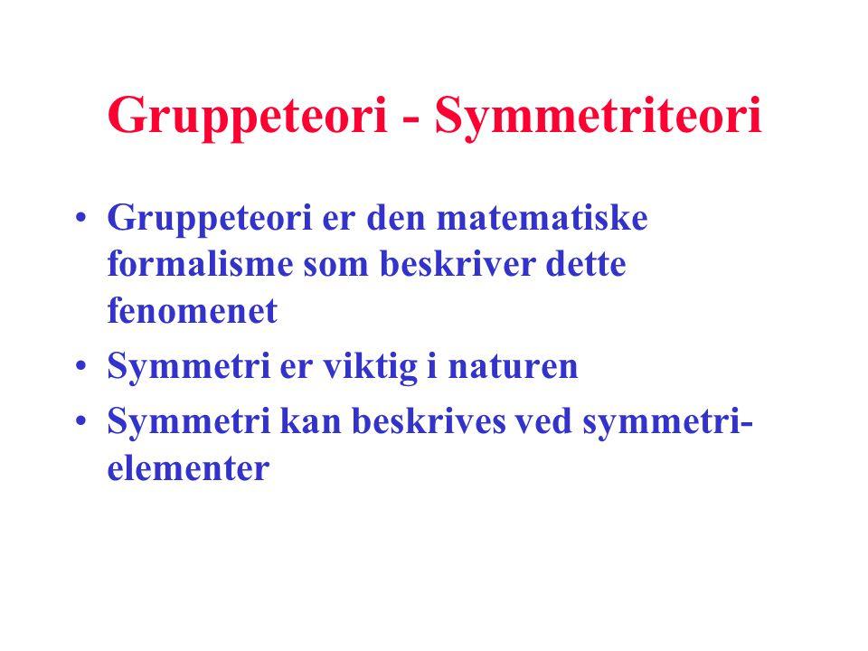 Gruppeteori - Symmetriteori
