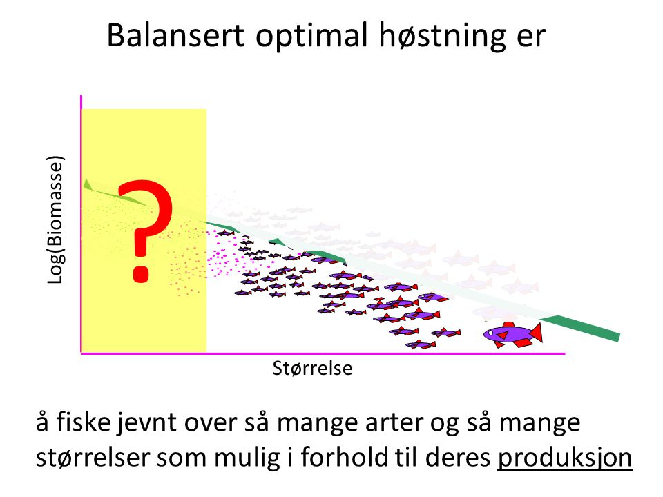 Balansert optimal høstning er