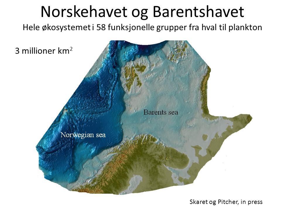Norskehavet og Barentshavet Hele økosystemet i 58 funksjonelle grupper fra hval til plankton
