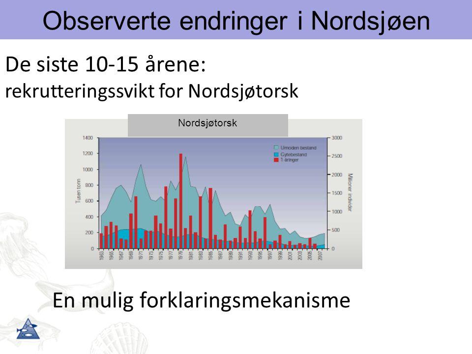 Observerte endringer i Nordsjøen