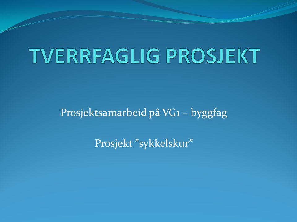 Prosjektsamarbeid på VG1 – byggfag Prosjekt sykkelskur