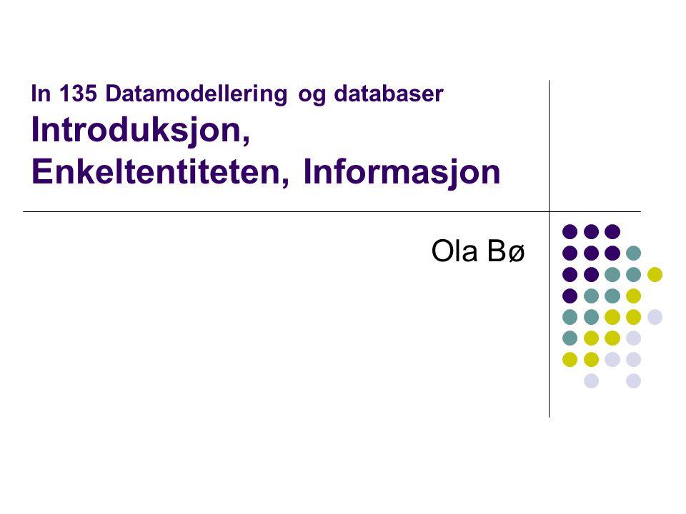 In 135 Datamodellering og databaser Introduksjon, Enkeltentiteten, Informasjon