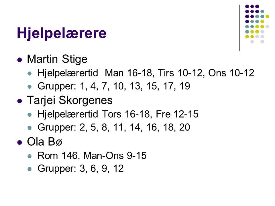 Hjelpelærere Martin Stige Tarjei Skorgenes Ola Bø