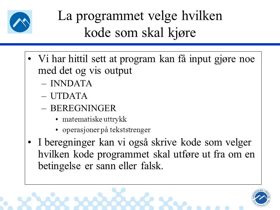 La programmet velge hvilken kode som skal kjøre