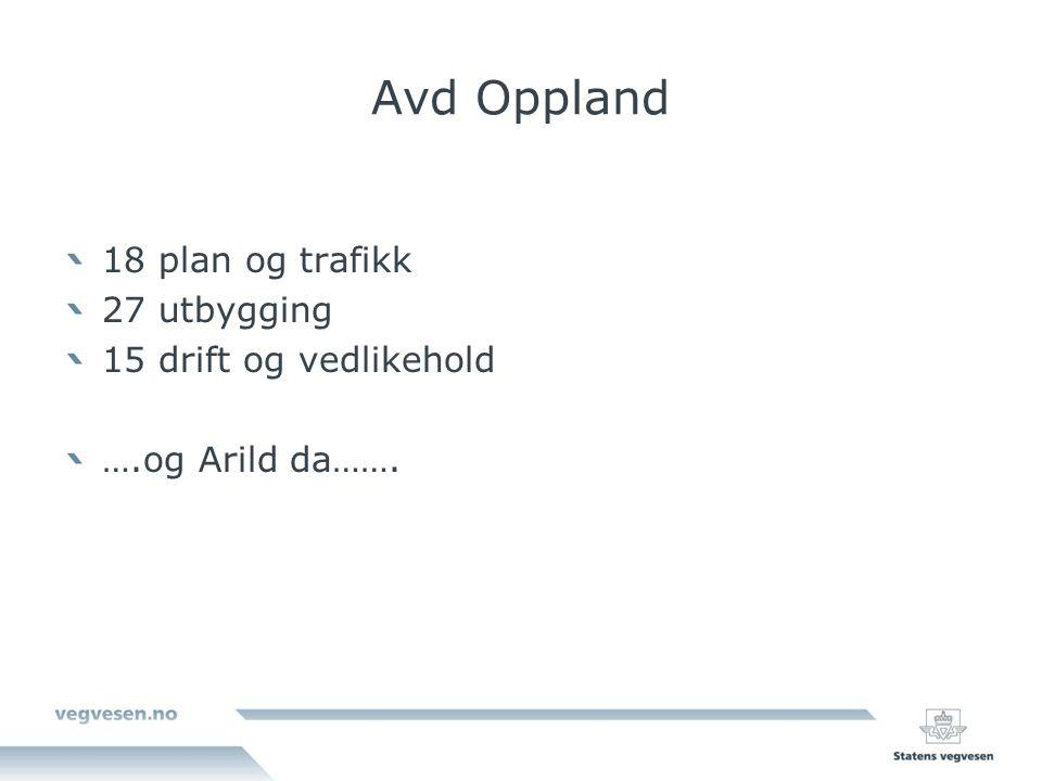 Avd Oppland 18 plan og trafikk 27 utbygging 15 drift og vedlikehold