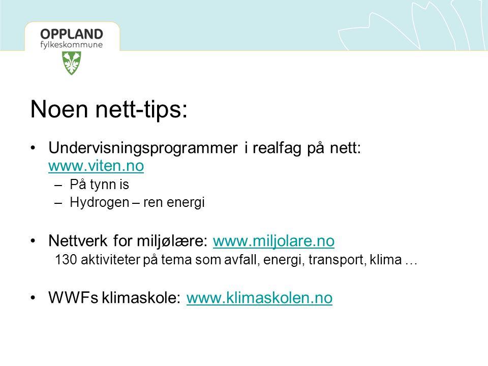 Noen nett-tips: Undervisningsprogrammer i realfag på nett: www.viten.no. På tynn is. Hydrogen – ren energi.