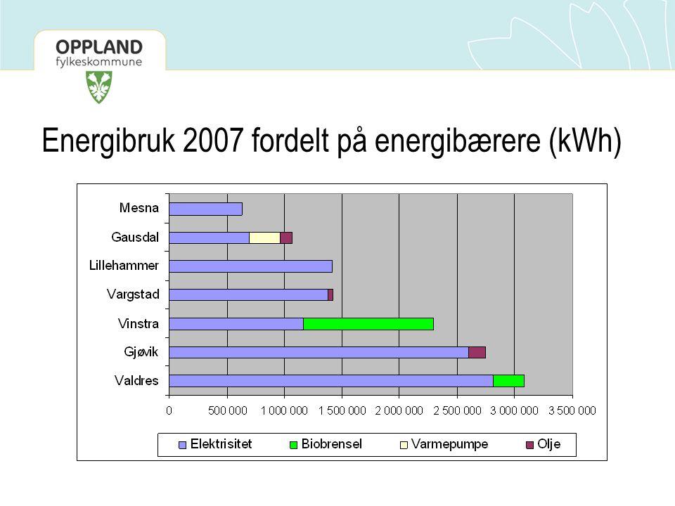 Energibruk 2007 fordelt på energibærere (kWh)