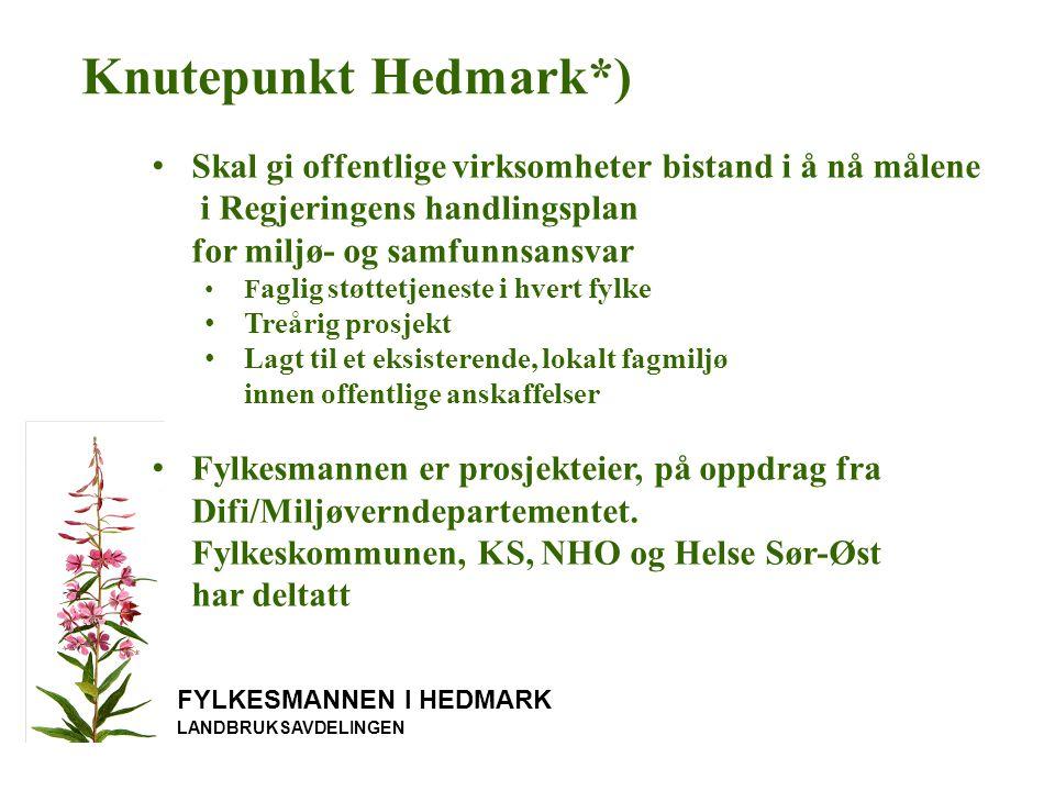 Knutepunkt Hedmark*) Skal gi offentlige virksomheter bistand i å nå målene i Regjeringens handlingsplan for miljø- og samfunnsansvar.