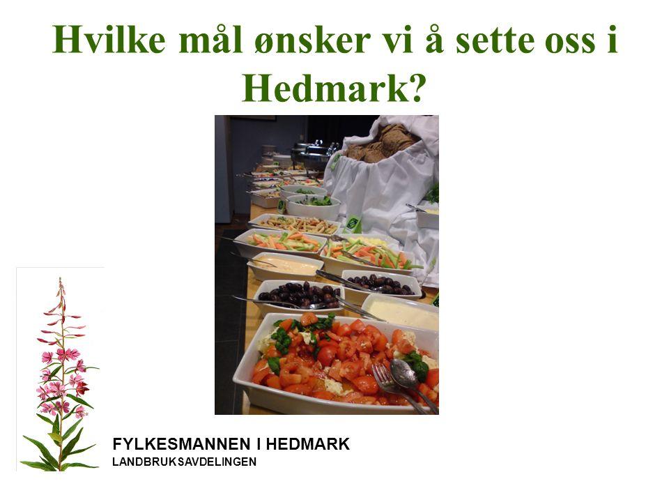 Hvilke mål ønsker vi å sette oss i Hedmark