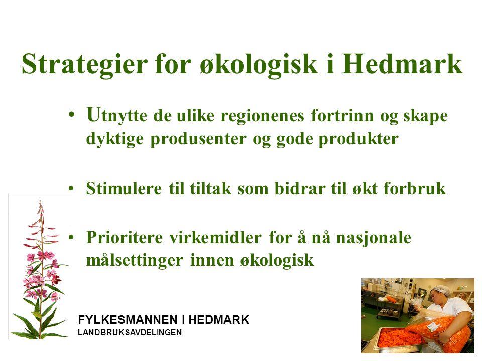 Strategier for økologisk i Hedmark