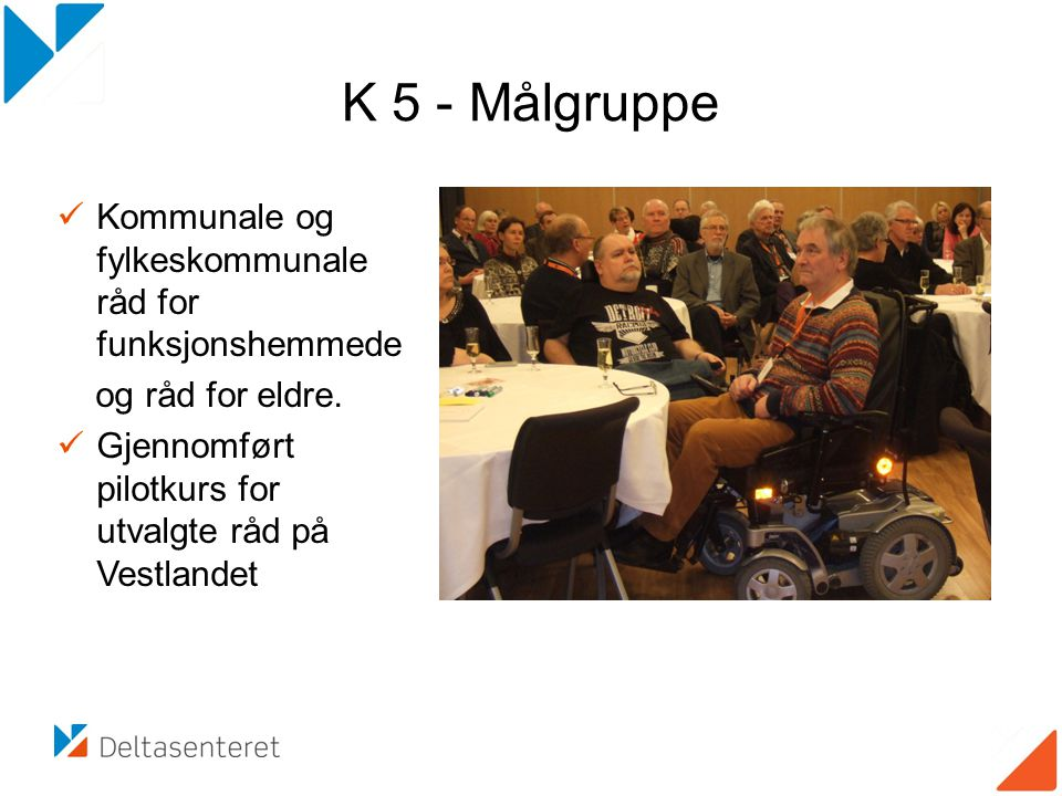 K 5 - Målgruppe Kommunale og fylkeskommunale råd for funksjonshemmede
