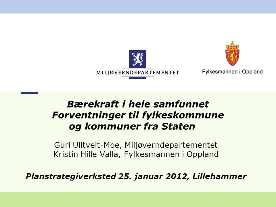 Planstrategiverksted 25. januar 2012, Lillehammer