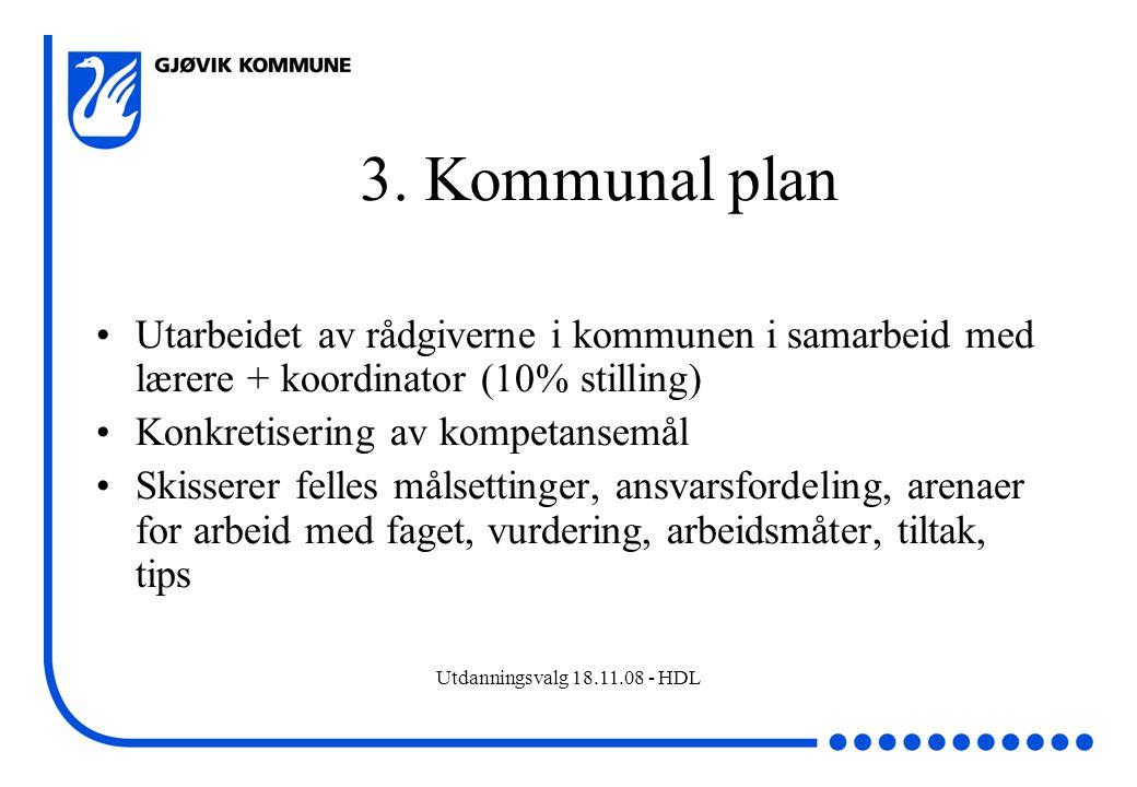 3. Kommunal plan Utarbeidet av rådgiverne i kommunen i samarbeid med lærere + koordinator (10% stilling)