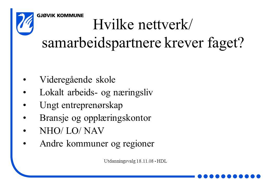 Hvilke nettverk/ samarbeidspartnere krever faget