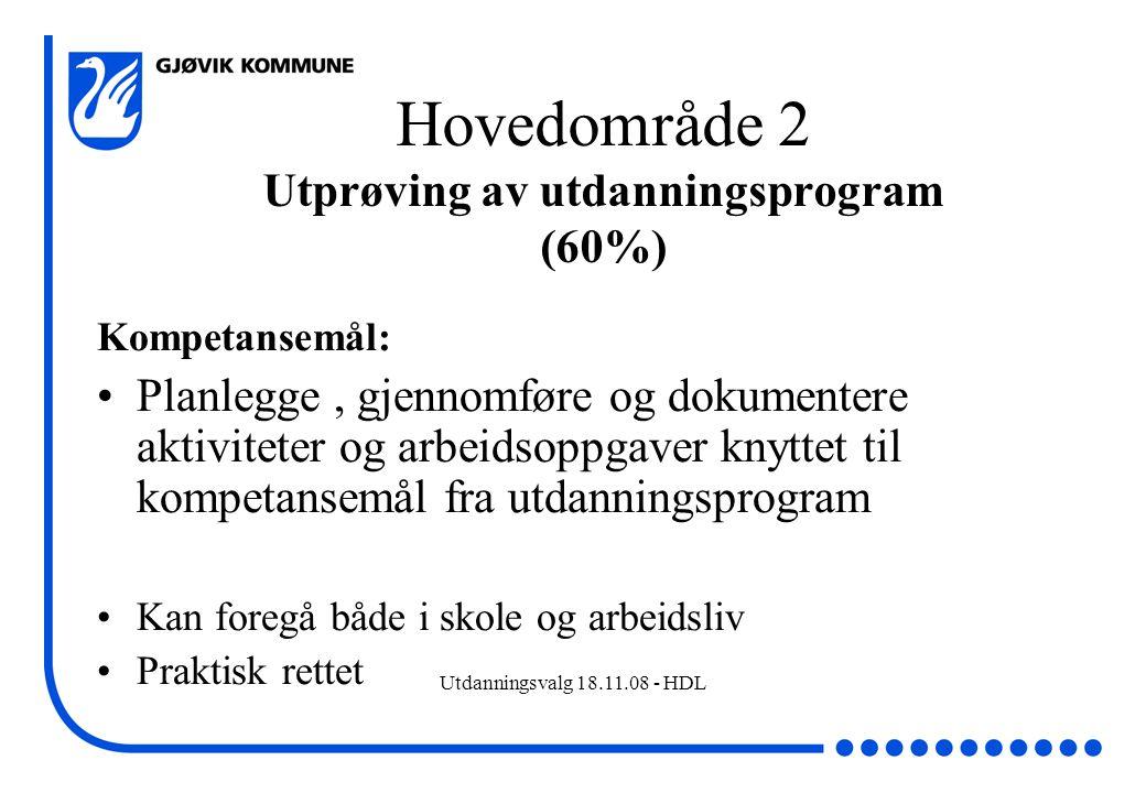 Hovedområde 2 Utprøving av utdanningsprogram (60%)