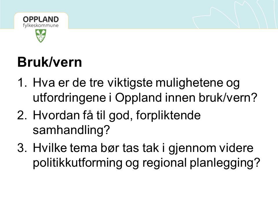 Bruk/vern Hva er de tre viktigste mulighetene og utfordringene i Oppland innen bruk/vern Hvordan få til god, forpliktende samhandling