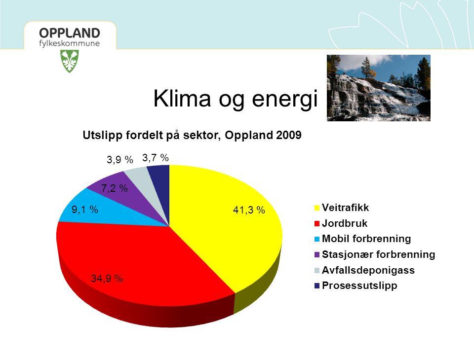 Utslipp fordelt på sektor, Oppland 2009