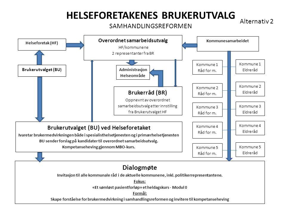 HELSEFORETAKENES BRUKERUTVALG