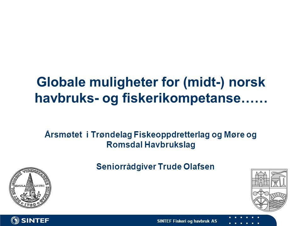 Globale muligheter for (midt-) norsk havbruks- og fiskerikompetanse……