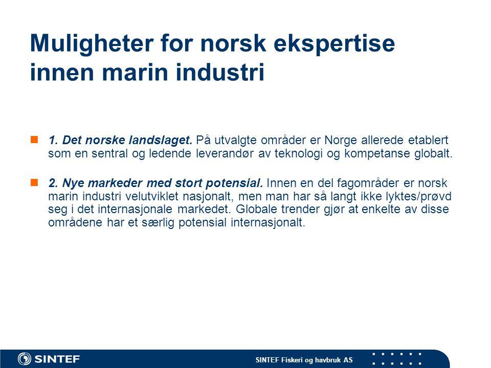 Muligheter for norsk ekspertise innen marin industri