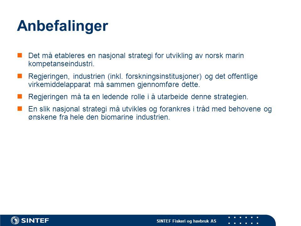 Anbefalinger Det må etableres en nasjonal strategi for utvikling av norsk marin kompetanseindustri.