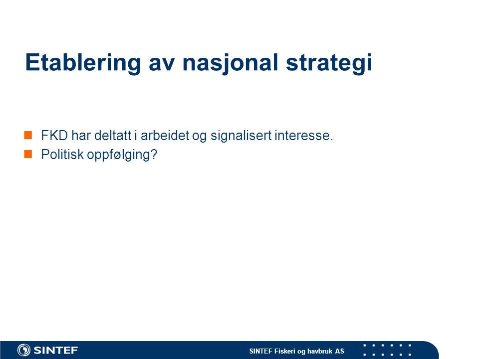 Etablering av nasjonal strategi