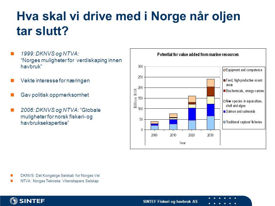 Hva skal vi drive med i Norge når oljen tar slutt