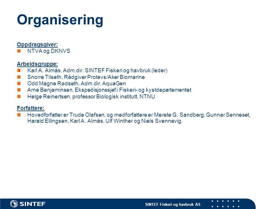 Organisering Oppdragsgiver: NTVA og DKNVS Arbeidsgruppe: