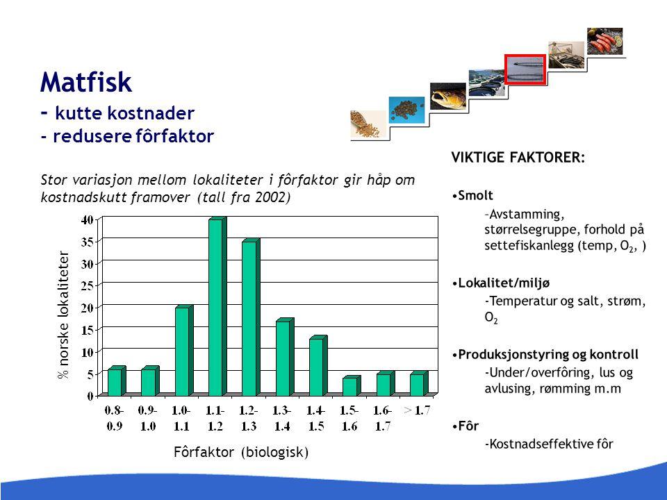 Matfisk - kutte kostnader - redusere fôrfaktor