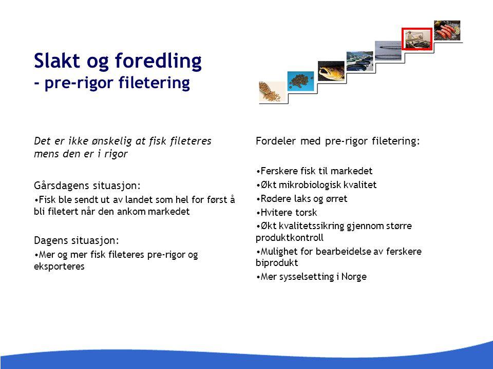 Slakt og foredling - pre-rigor filetering