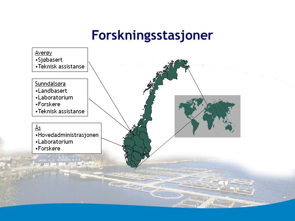 Forskningsstasjoner Averøy Sjøbasert Teknisk assistanse Sunndalsøra