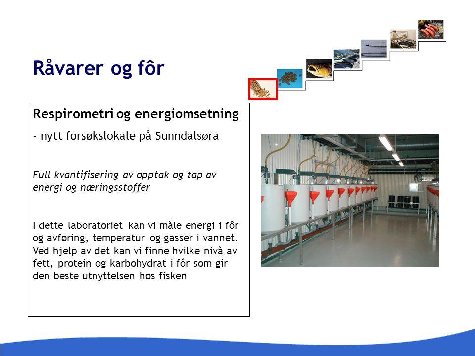 Råvarer og fôr Respirometri og energiomsetning