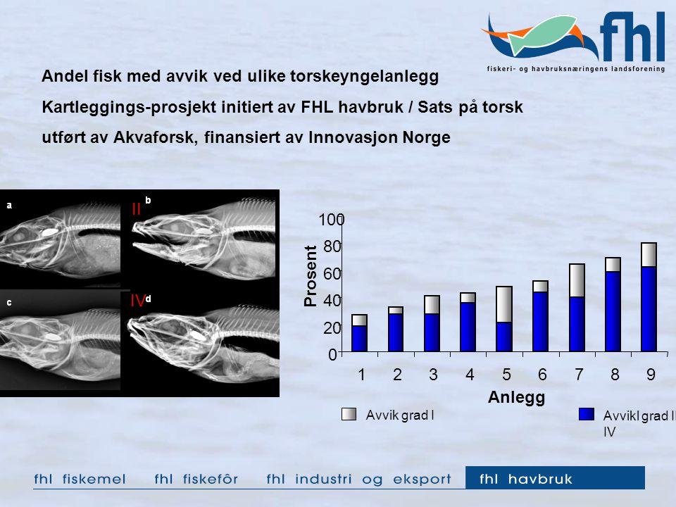 Andel fisk med avvik ved ulike torskeyngelanlegg