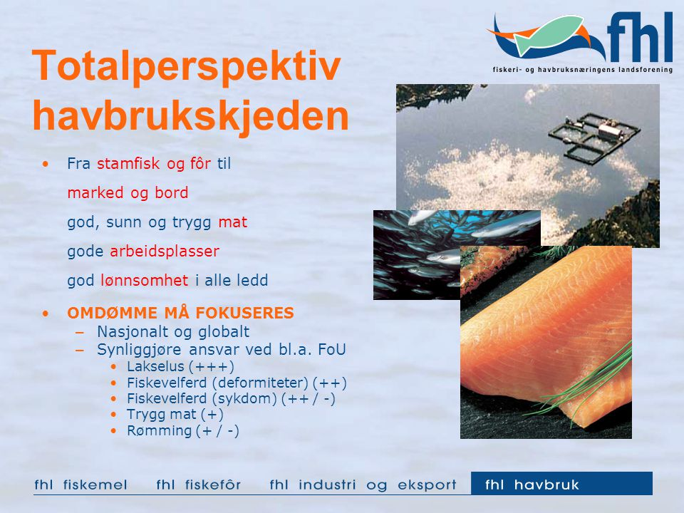 Totalperspektiv havbrukskjeden