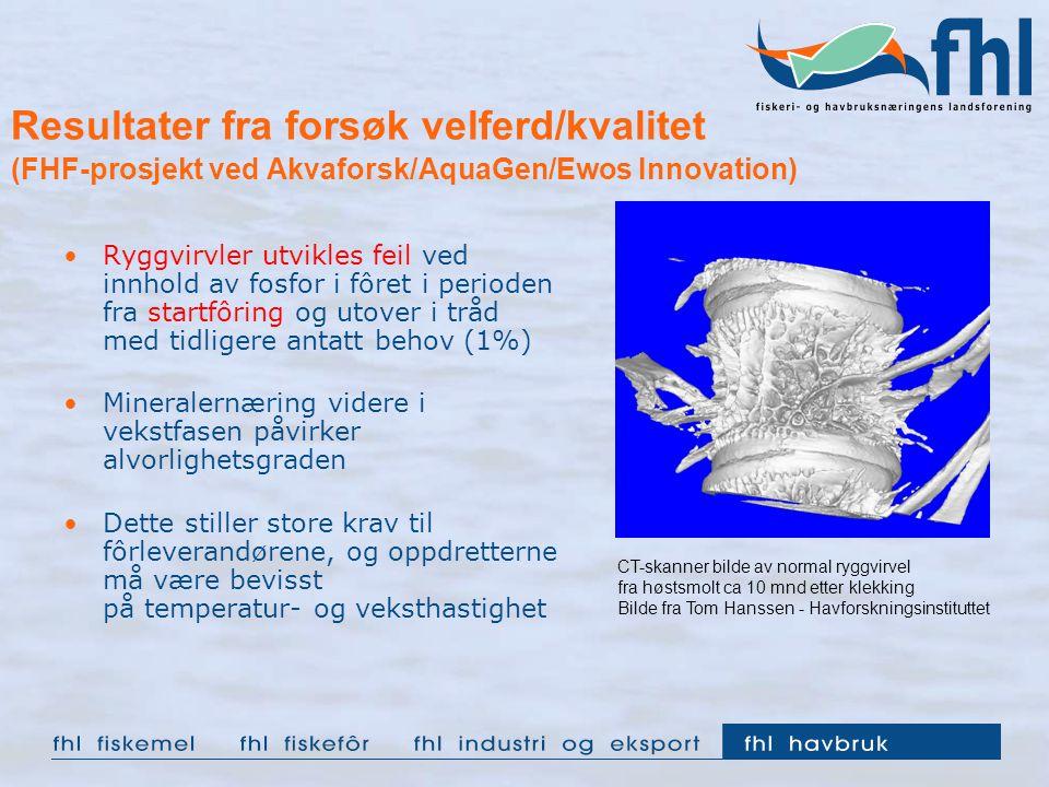Resultater fra forsøk velferd/kvalitet (FHF-prosjekt ved Akvaforsk/AquaGen/Ewos Innovation)