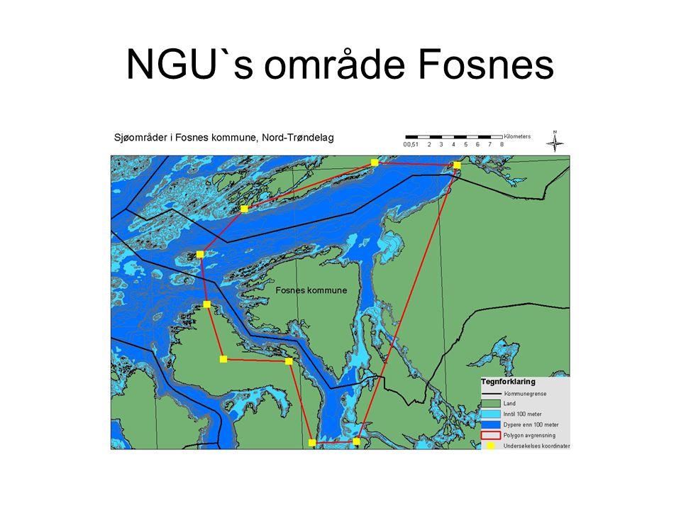 NGU`s område Fosnes