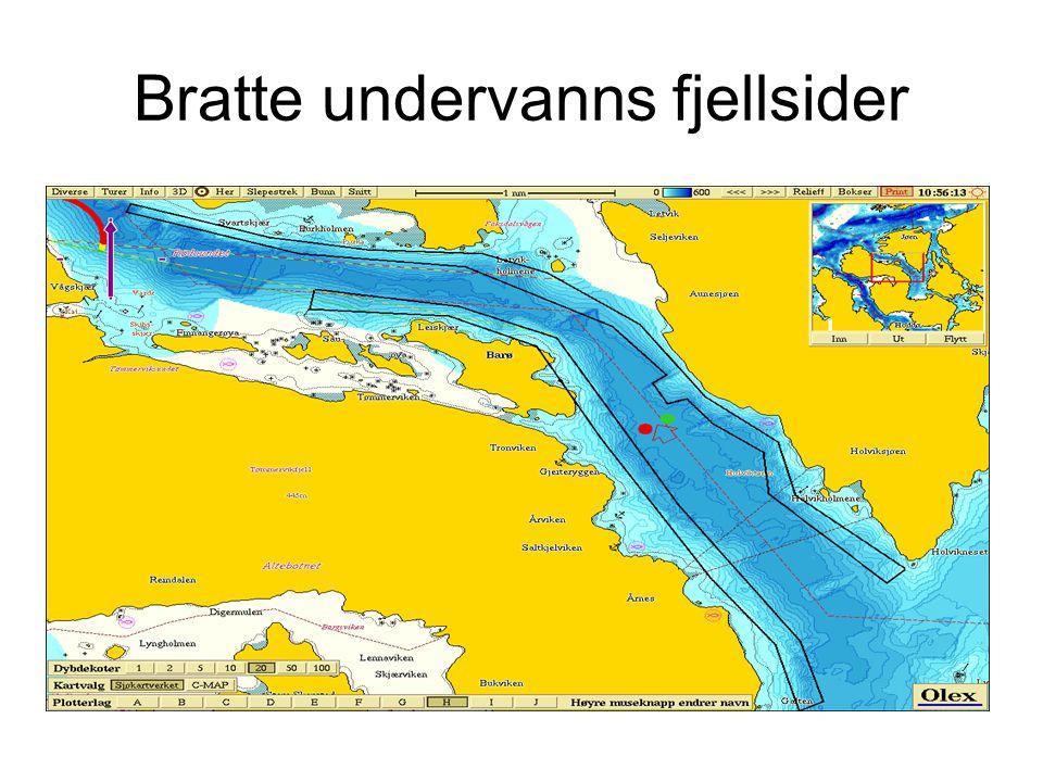 Bratte undervanns fjellsider