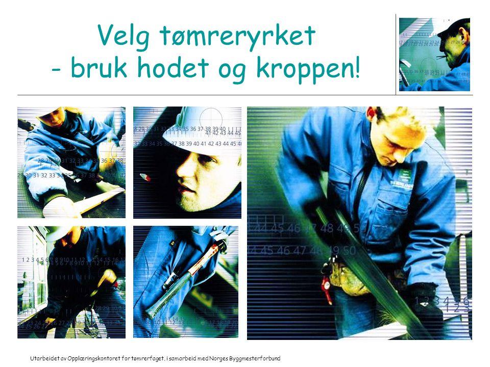 Velg tømreryrket - bruk hodet og kroppen!