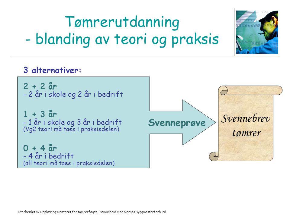Tømrerutdanning - blanding av teori og praksis