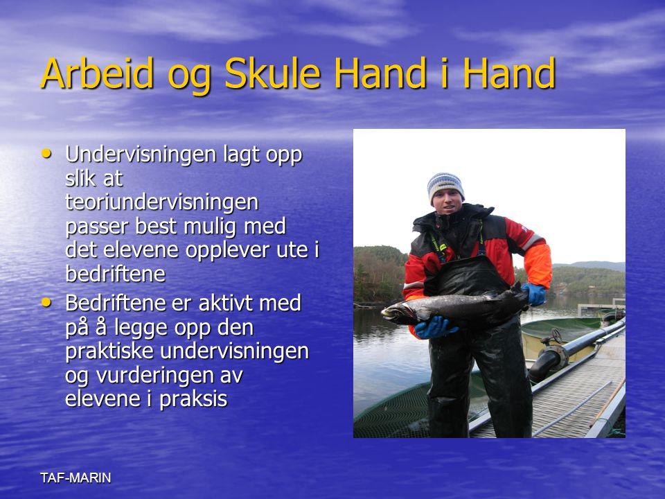 Arbeid og Skule Hand i Hand