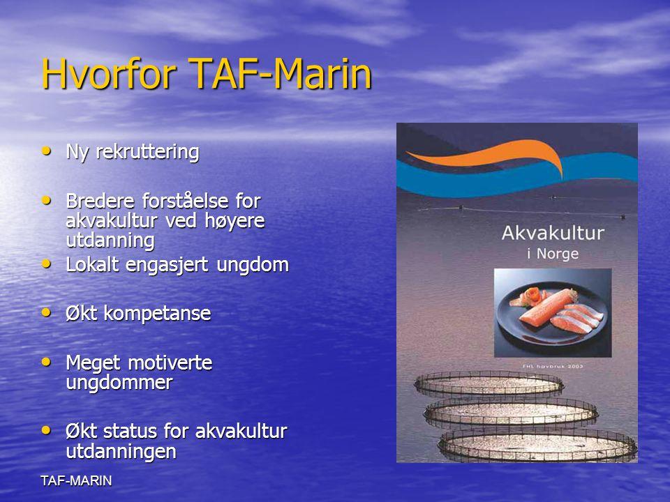 Hvorfor TAF-Marin Ny rekruttering