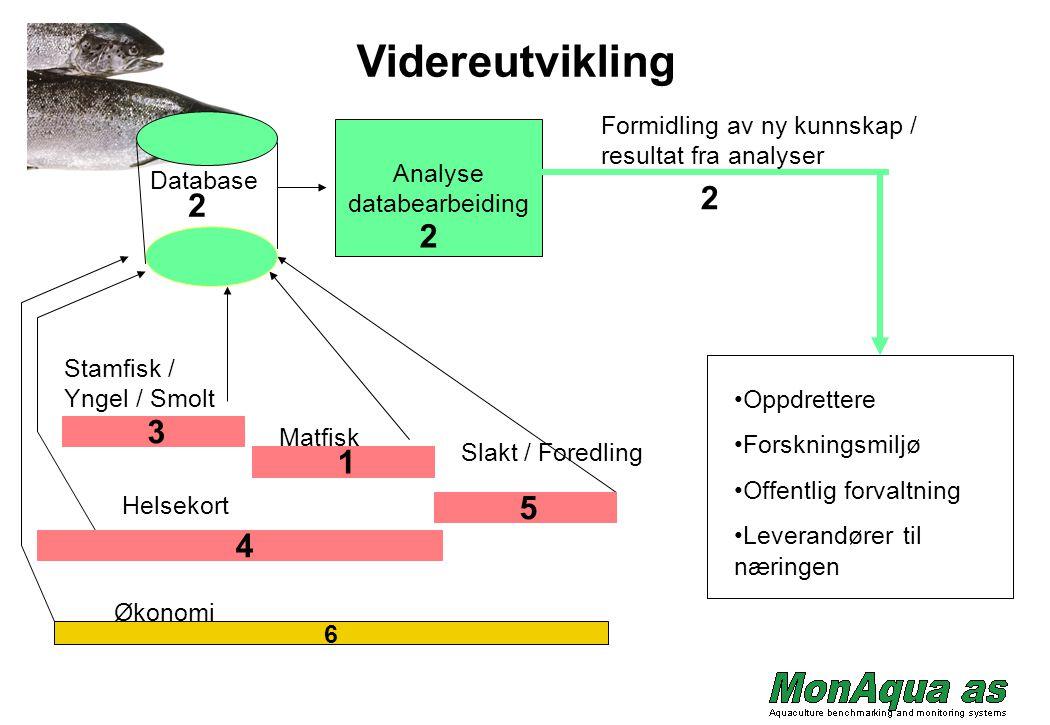 Videreutvikling Formidling av ny kunnskap / resultat fra analyser. Analyse. databearbeiding. Database.