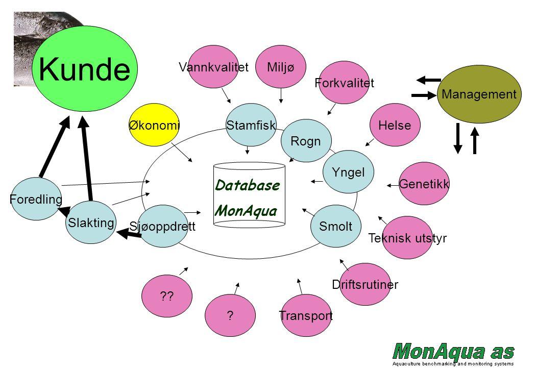 Kunde Database MonAqua Vannkvalitet Miljø Forkvalitet Management
