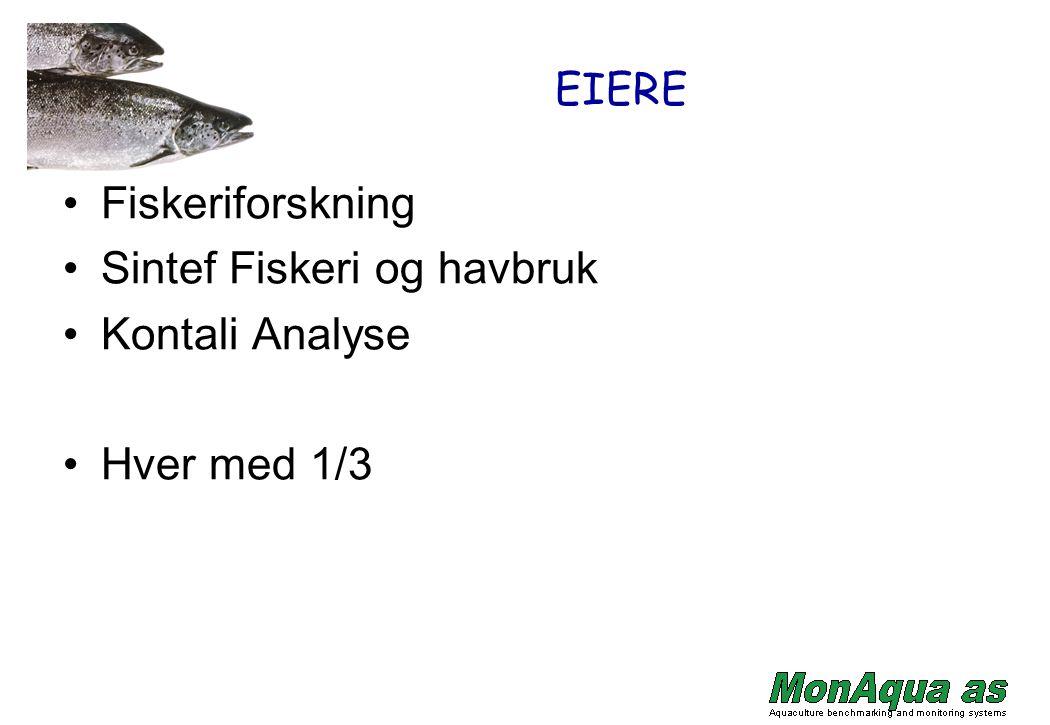 Sintef Fiskeri og havbruk Kontali Analyse Hver med 1/3