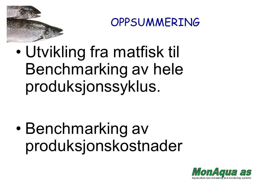 Utvikling fra matfisk til Benchmarking av hele produksjonssyklus.
